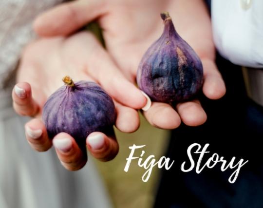 Figowa opowieść - pomysł na ślub i wesele. Sesja ślubna