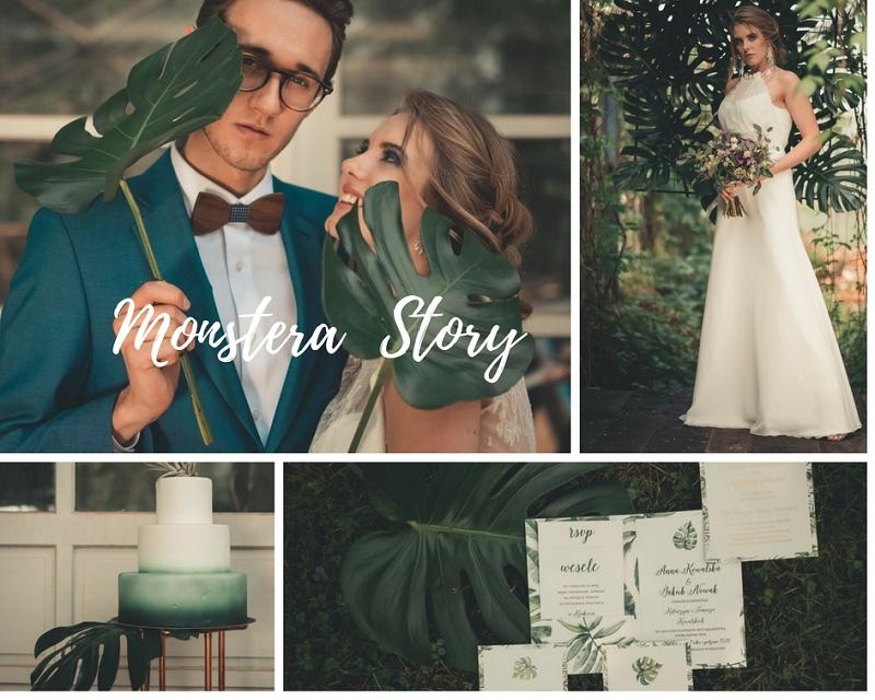 Sesja ślubna w szklarni z zielonymi liśćmi monstery