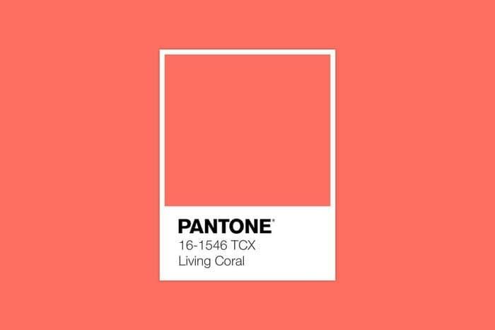 Kolor roku 2019 - Living Coral czyli Instytut Pantone zdecydował